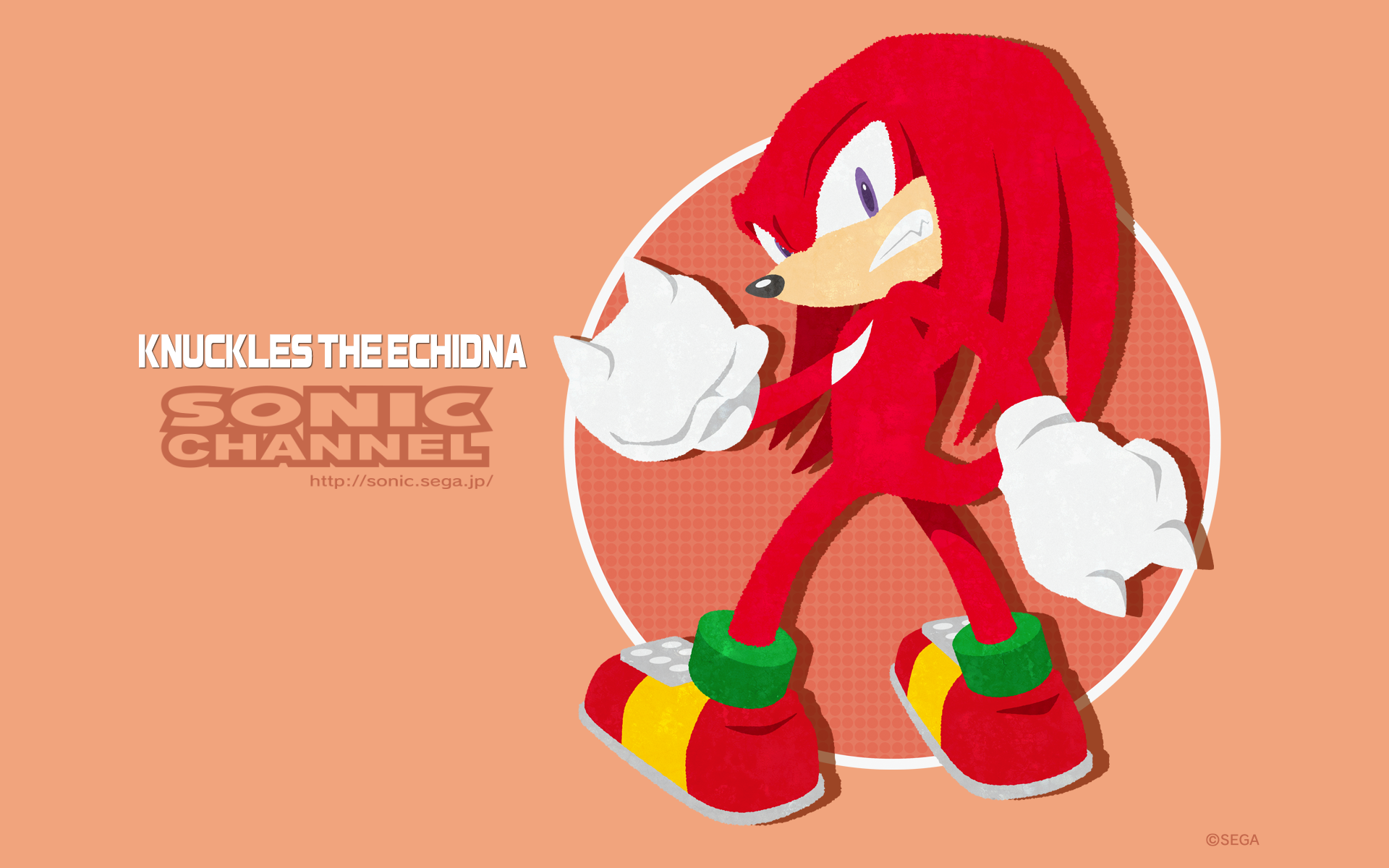 http://sonic.sega.jp/SonicChannel/enjoy/image/wallpaper_152_nuckles_12_pc.png
