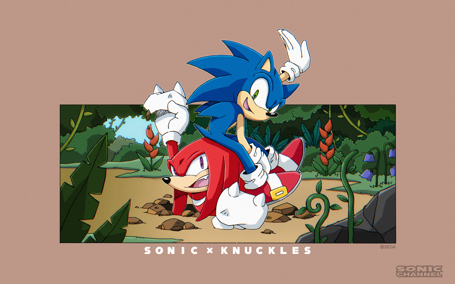 Sonic i Knuckles